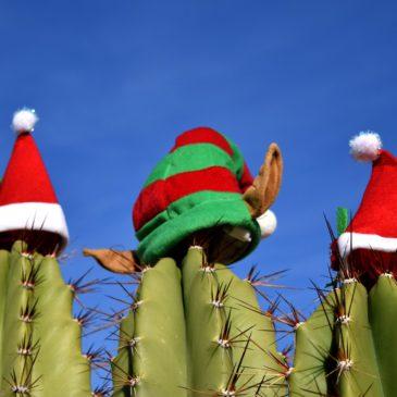 Kulturdschungel: Weihnachten in Afrika