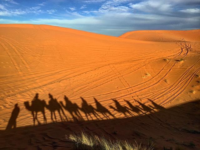 Kulturdschungel: Marokko